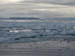 Antarctica 262