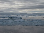 Antarctica 278