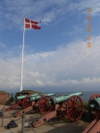 Cannon facing Sweden