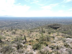 Tucson from Sky Island Scenic Byway