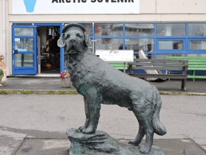 Bamse, the hero dog