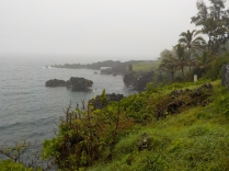Coast north of Hana