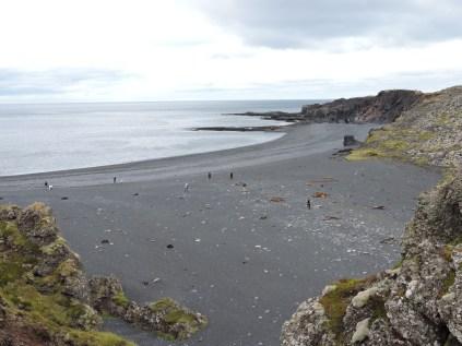 Black pebble beach at Djupalonssandur