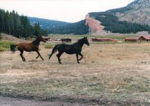1984_August_Darwin_Ranch_0032_a