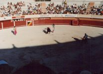"""Tercio de banderillas (""""part of banderillas""""): The matador places two barbed sticks with flags on them causing the bull to lose more blood."""