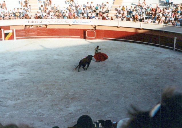 """Tercio de muerte (""""part of death""""): The matador kills the bull with a sword."""
