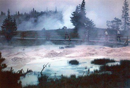 Yellowstone National Park 1964