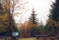 14 May 99: Clearly we need to go back when it can be seen better: Mount Ranier National Park.