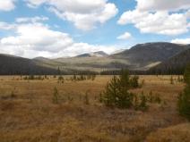 Big Meadows, Rocky Mountain National Park