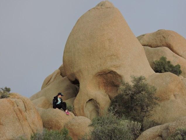 The Skull: Joshua Tree National Park