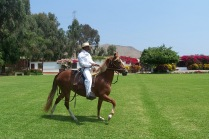 """Riding on the """"lawn"""" in front of the hacienda's home."""