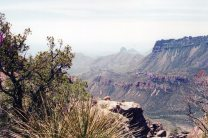 Big Bend National Park; on the Lost Mine Trail