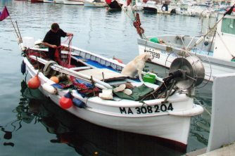 Fishing for a living in Cassis