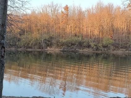 A favorite picnic spot at Alum Creek State Park