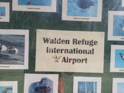Walden Refuge International Airport
