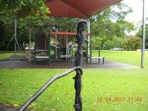 """Snakes"" on railing, Kuranda"
