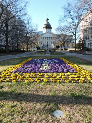 More spring beauty on the Capitol grounds.